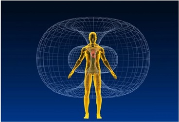 Drawing of Human Body's Chakra System|Energy Healing