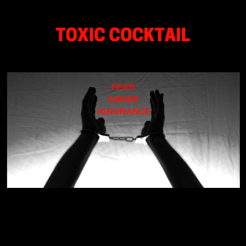 The Toxic Energy Cocktail: Anger, Ignorance and Fear (Energy Healing)